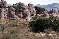 Southern New Mexico is famous for its clear night skies and New Mexico State Parks established its first astronomical observatory at City of Rocks State Park.