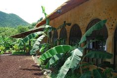 Earthship | Images - Category: Nicaragua