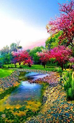 's photo. Beautiful Nature Pictures, Beautiful Nature Wallpaper, Amazing Nature, Nature Photos, Pretty Pictures, Beautiful Landscapes, Beautiful World, Beautiful Gardens, Simply Beautiful