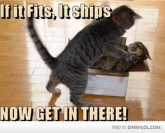 lol, if it fits it ships!!!