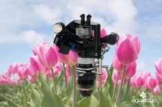 Aspersor de plástico de impacto 💦 para montaje sobre elevador ideal para campos de cultivo como estos campos de tulipanes 🌹🌷 👇 👇 👇  [+Info ➡ 955 99 81 81/ info@aquatubo.com] Elevator, Tulip Fields, Water Treatment, Irrigation