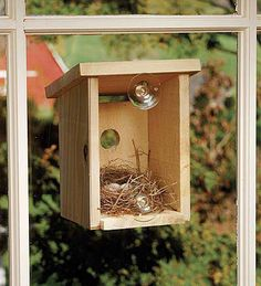 1000 Images About Making Birdhouses On Pinterest