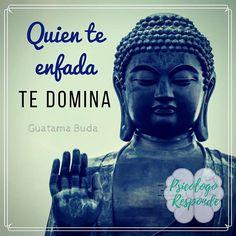 El odio nos controla. #buda #oriental #budismo #budism #templozulai #ioga #yoga #mindfulness #zen #contol #calma #calm #felicidad #happines #pazinterior #budismotibetano #paz #amor #corazon #enfado #angry #sabiduria #wisdom #frase #palabra #frasedeldia #quoteoftheday