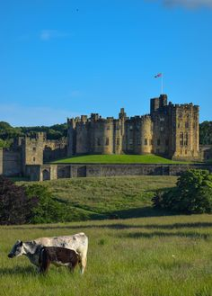 The inspiration for Harry Potter's Hogwarts - Alnwick Castle, England