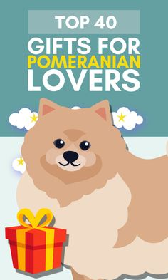 Are you looking for original, cute & funny Pomeranian gifts? Then you have come to the right place! Any Pomeranian lover would be thrilled to receive a gift relating to their favorite fluff ball. And we already did all the hard work for you! We scoured the internet, and selected the hottest & cutest Pomeranian ornaments & merchandise for our top 40 of best Pomeranian gifts. Get ready for some serious fluff! Here we go! #giftsfordoglovers #doglovergifts #pomeranianlovers Gifts For Dog Owners, Dog Lover Gifts, Dog Lovers, Dog Home Decor, Cute Dogs, Fun Dog, Cute Pomeranian, Great Gifts For Women, Mother Birthday Gifts