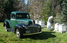 Click on the photo and read about this rare Canadian-built pickup.
