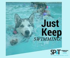Get your swim on in a above ground pool! #JustKeepSwimming #Summer2015