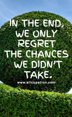 """""""In the end we only regret the chances you didn't take """"___16 Quotes to Make You Feel Amazing #link"""
