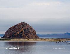 Morro Rock T-shirt (Morro Bay, California) from the Cheshire Cat Photo Store on Zazzle! http://www.zazzle.com/morro_rock_morro_bay_california_products_tshirt-235172992717533248