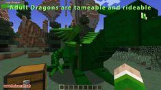 Realm of The Dragons Mod 1.12.2/1.11.2 (Dragon Mounts Remake) - MINECRAFT, FORTNITE, PUBG, ROBLOX Hacks & Cheats.