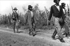 Black Then   Elaine Race Riot: Estimated 856 Black Sharecroppers Murdered Who Just Wanted Better Pay