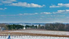 A winter wine trail in the Leelanau Peninsula in Michigan can be covered by skis or snowshoes.
