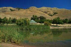 Ed Levin Park - Milpitas, California (We used to live not far from Milpitas in San Jose and visited this park.)
