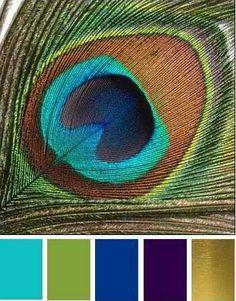 Kleuren kamer Andes