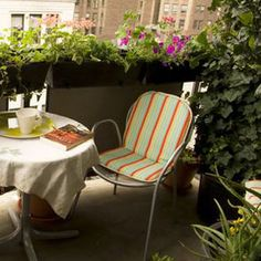 How to Start a Balcony Garden