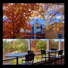 The SCSU Library has a great view when studying of the beautiful fall colors!