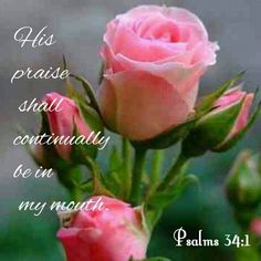 PSALMS 34:1. His praise shall continually be in my mouth!