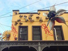 Достойное оформление цветочного магазина. Австралия. Flower shop with attitude.  Fitzroy Melbourne.  #flowers #bees #carnivorousplant #melbourne #brunswickstreet #fitzroy ( # @gusmorainslie ) #ulsk #ульяновск