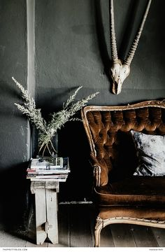 The décor of The Richmond Café and Rooms features a mixture of traditional South African and luxurious vintage elements, including this antelope skull and velvet sofa.