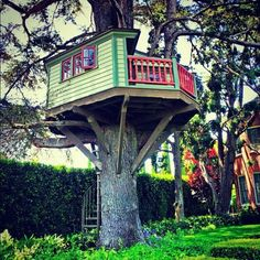 As an adult I'm still in love with tree houses, every kid should have one.  Don't waist your money on those plastic play houses.