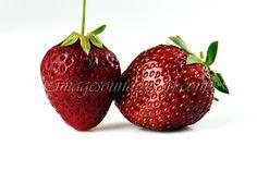 Produktfoto, Erdbeeren, capsune. fotografie de produs,