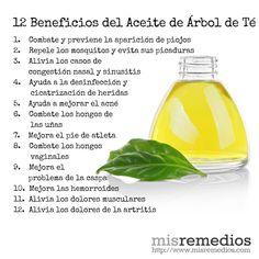 9 Ideas De Aceite De árbol De Té Aceite De árbol De Té Aceite Aceite Arbol De Te
