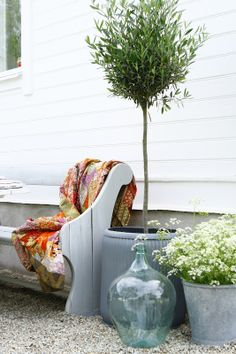 A simple topiary makes a big statement, especially against this white exterior warll.