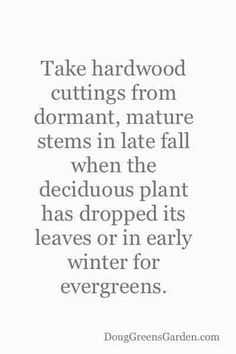 Six Steps to Successfully Taking Hardwood Cuttings and Propagating Trees and Shrubs
