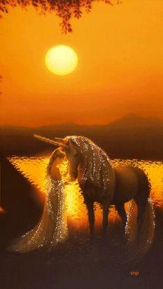 The healing power of Unicorn Beautiful Unicorn, Beautiful Fantasy Art, Beautiful Gif, Beautiful Fairies, Beautiful Horses, Beautiful Pictures, Unicorn And Fairies, Unicorn Fantasy, Unicorns And Mermaids