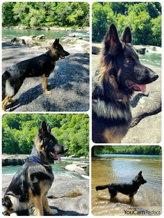 June 1, 2017 hike at Valley Falls State Park, WV.
