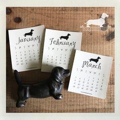 75% OFF Brown Kraft Year of the Doxie. 2017 Desktop Calendar