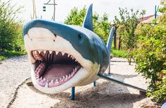 Shark big plastic model | gorg66, animal, large, nature
