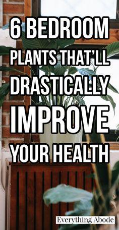 Garden Plants, House Plants, Potted Plants, Inside Plants, Bedroom Plants, Home Upgrades, Growing Plants, Healthy Habits, Backyard
