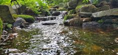 I just love this stream and falls! Shady and mossy and man what a sound! Koi Ponds, Water Gardens, River, Outdoor, Outdoors, Rivers, Outdoor Games, Water Garden, Water Features
