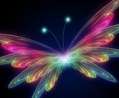 3D baterfly