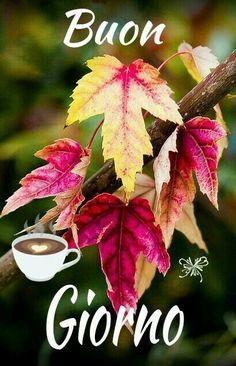 Italian Greetings, Italian Quotes, Good Morning, Plants, Phrases In Italian, Sky, Pictures, Italy, Sunday