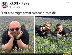 """""""Felt cute might arrest someone later idk"""" - iFunny :) Stupid Funny Memes, Funny Relatable Memes, Haha Funny, Funny Cute, Funny Posts, Hilarious, Funny Stuff, Funny Images, Funny Pictures"""
