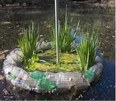 Floating trash islands to purify water plants will for Plastic floating pond plants