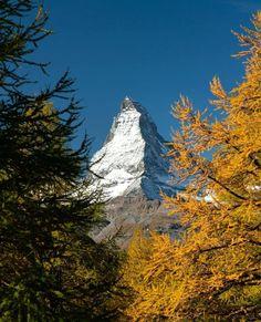 Bonjour du Cervin 🏔 ⠀⠀⠀⠀⠀⠀⠀⠀⠀⠀⠀⠀⠀⠀⠀⠀⠀⠀⠀⠀⠀⠀⠀⠀⠀⠀⠀⠀⠀⠀⠀⠀⠀⠀⠀⠀⠀⠀⠀⠀⠀⠀⠀⠀⠀⠀⠀⠀ ⠀⠀⠀⠀⠀⠀⠀⠀⠀⠀⠀⠀⠀⠀⠀⠀⠀⠀⠀⠀⠀⠀⠀⠀⠀⠀⠀⠀⠀⠀⠀⠀⠀⠀⠀⠀⠀⠀⠀⠀⠀⠀⠀⠀⠀⠀⠀⠀ 📸:@anthony__chenot ⠀⠀⠀⠀⠀⠀⠀⠀⠀⠀⠀⠀⠀⠀⠀⠀⠀⠀⠀⠀⠀⠀⠀⠀⠀⠀⠀⠀⠀⠀⠀⠀⠀⠀⠀⠀⠀⠀⠀⠀⠀⠀⠀⠀⠀⠀⠀⠀ ⠀⠀⠀⠀⠀⠀⠀⠀⠀⠀⠀⠀⠀⠀⠀⠀⠀⠀⠀⠀⠀⠀⠀⠀⠀⠀⠀⠀⠀⠀⠀⠀⠀⠀⠀⠀⠀⠀⠀⠀⠀⠀⠀⠀⠀⠀⠀⠀ ⠀⠀⠀⠀⠀⠀⠀⠀⠀⠀⠀⠀⠀⠀⠀⠀⠀⠀⠀⠀⠀⠀⠀⠀⠀⠀⠀⠀⠀⠀⠀⠀⠀⠀⠀⠀⠀⠀⠀⠀⠀⠀⠀⠀⠀⠀⠀⠀ ⠀⠀⠀⠀⠀⠀⠀⠀⠀⠀⠀⠀⠀⠀⠀⠀⠀⠀⠀⠀⠀⠀⠀⠀⠀⠀⠀⠀⠀⠀⠀⠀⠀⠀⠀⠀⠀⠀⠀⠀⠀⠀⠀⠀⠀⠀⠀⠀ ⠀⠀⠀⠀⠀⠀⠀⠀⠀⠀⠀⠀⠀⠀⠀⠀⠀⠀⠀⠀⠀⠀⠀⠀⠀⠀⠀⠀⠀⠀⠀⠀⠀⠀⠀⠀⠀⠀⠀⠀⠀⠀⠀⠀⠀⠀⠀⠀ #suisse #switzerland #schweiz #svizzera #switzerlandwonderland #swiss #visitswitzerland #lake #lac #montagne… Mount Rainier, Switzerland, Mount Everest, Mountains, Nature, Plants, Travel, Bonjour, Places