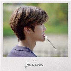 Nct 127 Mark, Nct Dream Jaemin, Johnny Seo, Jisung Nct, Na Jaemin, Entertainment, Picture Credit, Daily Photo, Love At First Sight