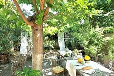 Cote Maison I've been collecting inspiration photos for alfresco dining ideas. Beautiful Interior Design, Beautiful Interiors, Outdoor Dining, Outdoor Spaces, Outdoor Seating, Outdoor Ideas, Backyard Ideas, Vignette Design, Al Fresco Dining