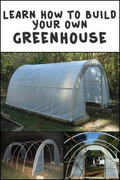 Pssst! Want a Cheap Greenhouse? How Does $50 Sound? This Also Extends Your Growing Season