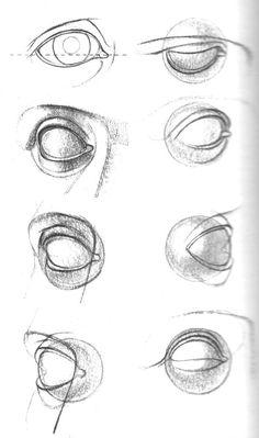 Human Eye Drawing, Human Anatomy Drawing, Body Drawing, Figure Drawing, Arte Com Grey's Anatomy, Eye Anatomy, Anatomy Art, Anatomy Sketches, Art Drawings Sketches