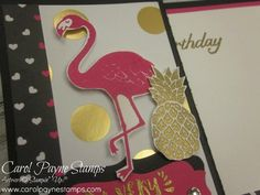 Stampin' Up! Pop of Paradise! - Stampingroxmyfuzzybluesox
