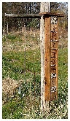 nichoir à insectes - perchoir de plein champs
