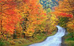 12 Best Places to See Fall Foliage in Maine Bar Harbor Baxter State Park Bethel Blue Hill Camden The Forks Rockwood Kennebunkport Lubec Monhegan Island Rangeley Rockland
