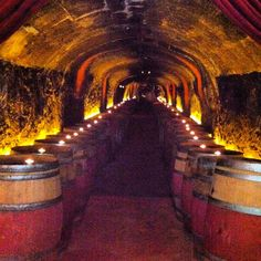 Del Dotto Winery & Caves - Napa, CA  Best cave tour and barrel tasting