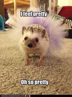You look pretty.