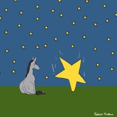 """Donkey """"Tino"""" & Co. The stars fall from the sky. by Federico Monzani"""