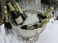 Bottles on ice! Our very first & brand new MCC chilling on ice at the picnic launch event. South African Wine, Gourmet Recipes, Wines, Red Wine, Barware, Product Launch, Bottles, Chilling, Picnic